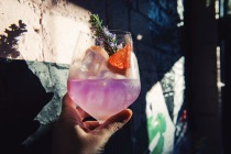 Ink gin and grapefruit sorbet tonic